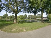 Schanswetering 31 in 'S-Hertogenbosch 5231 NC