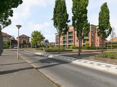 Rigoletto 20 in Eindhoven 5629 NH