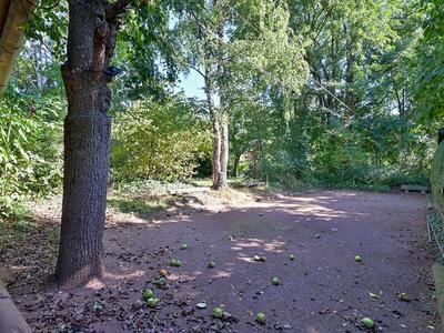 Meidoorn 98 in Maastricht 6226 WC