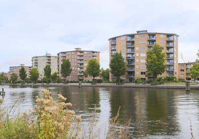 Van Reigersbergenstraat 544 in Amsterdam 1052 WG