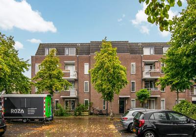 Paddemoes 1 in Gorinchem 4201 BT