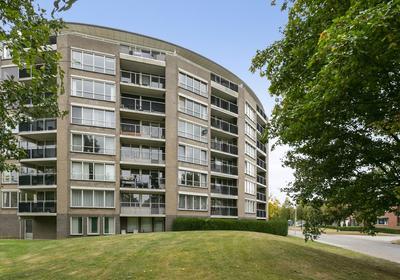 Salviabeemd 35 E in Maastricht 6229 XA