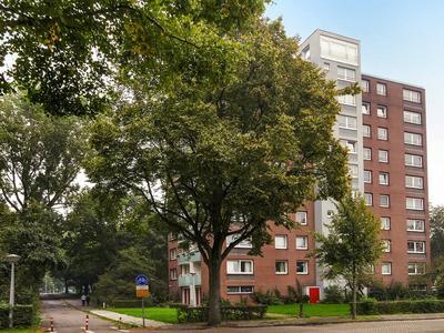 Dierenriem 116 in Amsterdam 1033 AH