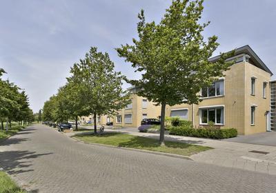 Lepelaar 68 in Bergen Op Zoom 4617 JR