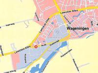 Nude 54 in Wageningen 6702 DN