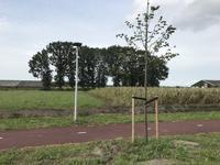 Bernhardstraat 19 * in Rucphen 4715 PX