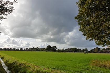 Holtjesweg in Wapse 7983 KD