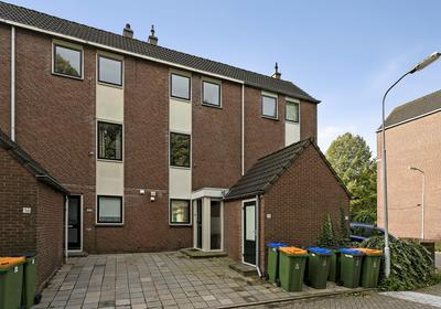Pieter De Hooghstraat 34 in Ede 6717 PW