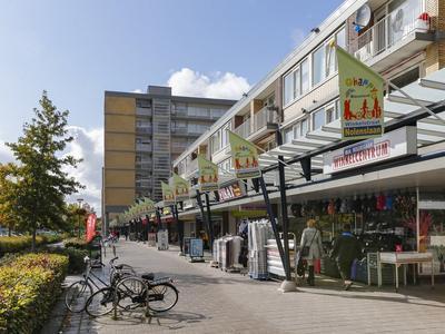 Lieftinckplein 21 in Schiedam 3119 PN
