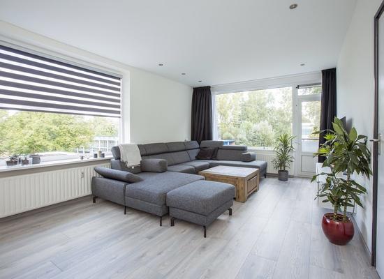 Van Opbergenstraat 8 in Rotterdam 3067 XN