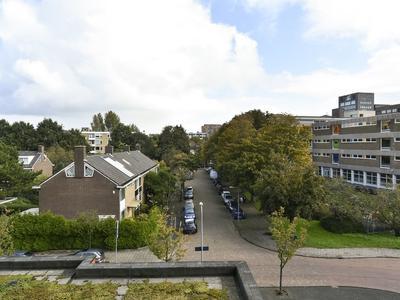 Papyruspad 205 in Rijswijk 2283 HJ