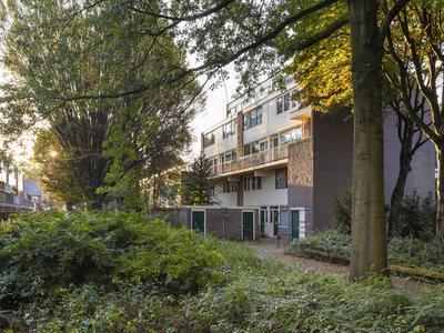 Doornenburg 806 in Deventer 7423 BW