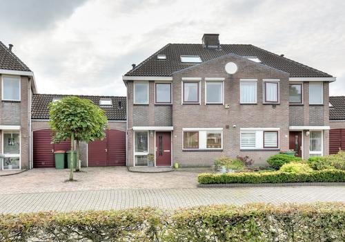 Schijfkamille 5 in Breda 4823 CL