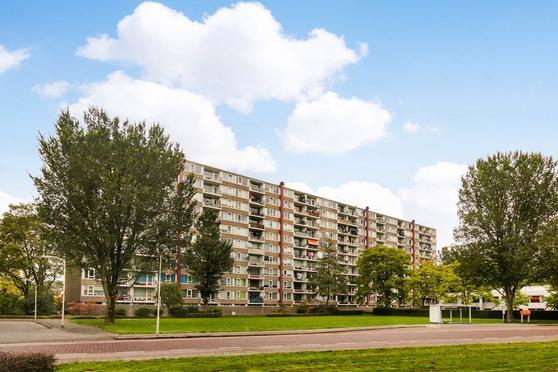 Van Goudoeverstraat 83 in Gorinchem 4204 XC