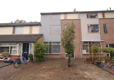 Zadelmakersdonk 407 in Apeldoorn 7326 JR