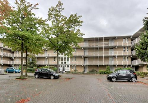 Wildzang 64 in Breda 4822 RR