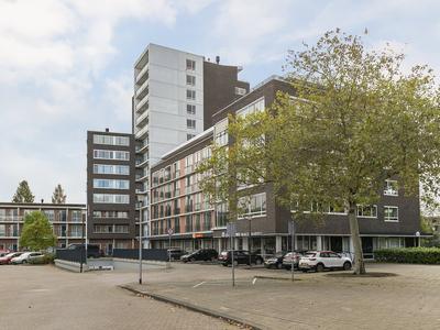 Hargplein 171 in Schiedam 3121 VG