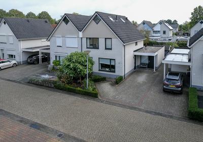 Grauwe Gans 10 in Emmen 7827 SV