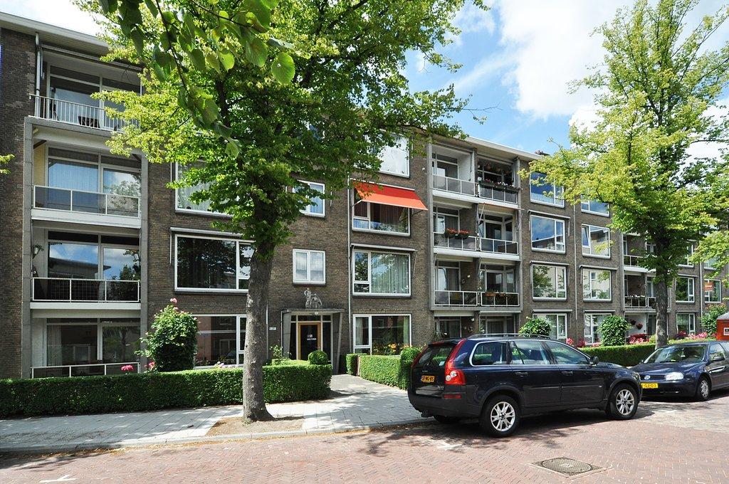Willem van Aelststraat, Delft