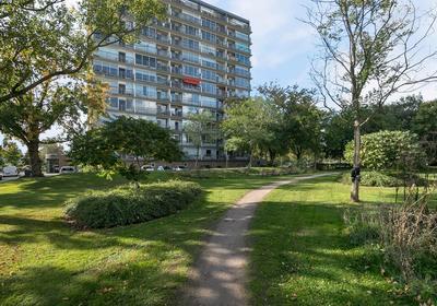 Handellaan 29 in Zwolle 8031 EE