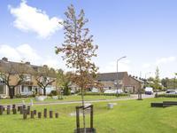 Teilingen 35 in Oosterhout 4901 DA