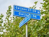 Galjoen 06 6 12 in Lelystad 8243 MR