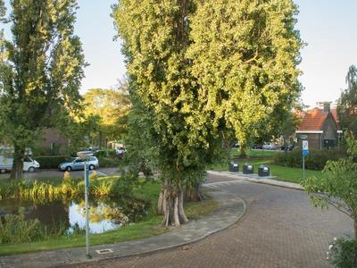 Surinamesingel 87 in Vlaardingen 3131 XL