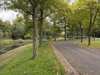 Te koop eengezinswoning in de Marken aan de Hofmark 318 Almere