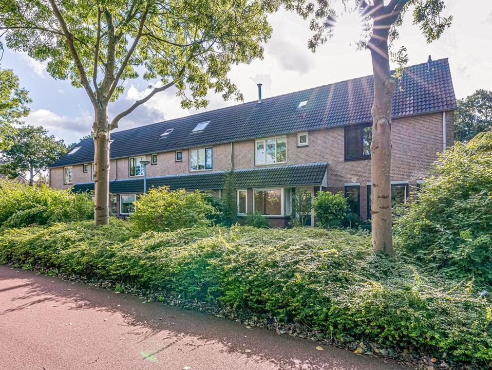 Suze Groenewegstraat 58 in Alkmaar 1827 LJ