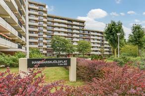 Hammarskjoldlaan 163 in Rijswijk 2286 HA
