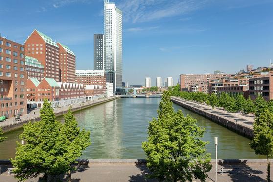 Lodewijk Pincoffsweg 462 in Rotterdam 3071 AS