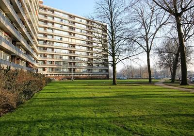 Vrijheer Van Eslaan 241 in Papendrecht 3353 TG
