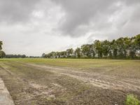 'T Zand 3 in Westerbeek 5843 BB