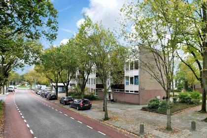 Terborchlaan 79 in Alkmaar 1816 LB
