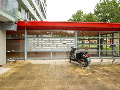 Wederikstraat 5 in Alphen Aan Den Rijn 2403 CB