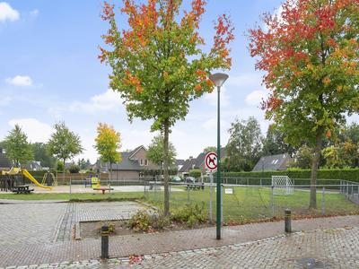 Haagbeuk 7 in Langenboom 5453 LH