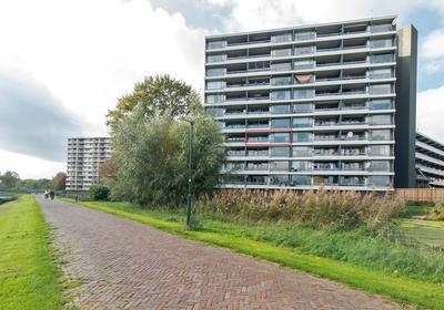 Zuiderkruis 478 in Veenendaal 3902 XP