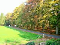 Wolfersveenweg 19 in Zelhem 7021 HH