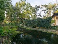 Aviolandalaan 27 in Hoogerheide 4631 RP