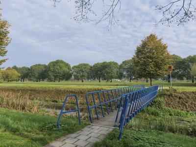 Regulus 35 in Hoogeveen 7904 KJ