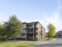 Hermelijnvlinder 101 in Oosterhout 4904 ZD