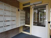 Ceintuurbaan Noord 3 C in Roden 9301 NR
