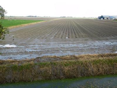 Oudebildtdijk 14 in Oudebildtzijl 9078 WG