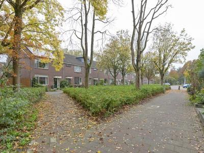 Gravestein 17 in Gouda 2804 GR
