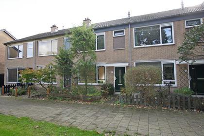 Birkastraat 17 in Wijk Bij Duurstede 3962 BM