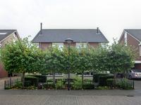 Junoplein 6 in Bemmel 6681 PZ