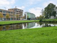 Argonautenweg 15 M in Rotterdam 3054 RP