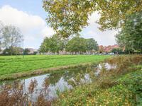 De Zoom 60 in Woerden 3448 DJ