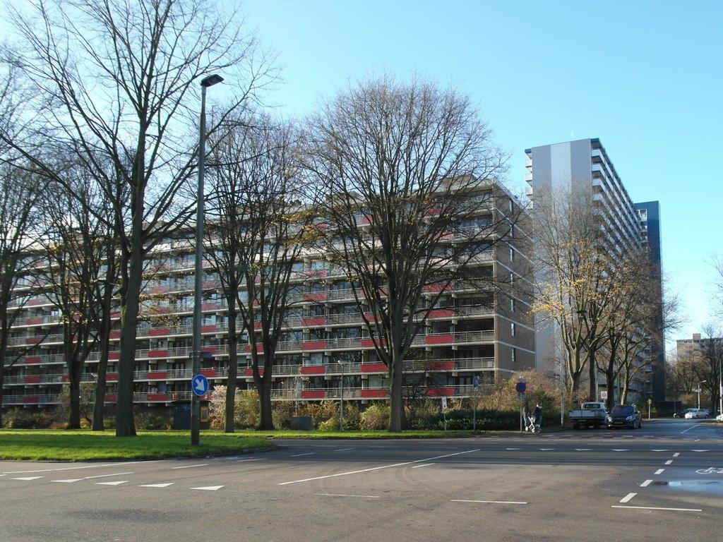 Roland Holstlaan, Delft