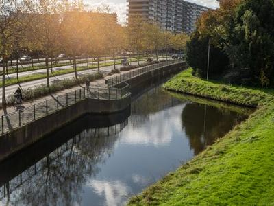Louis Bouwmeesterstraat 91 in Rijswijk 2284 XP